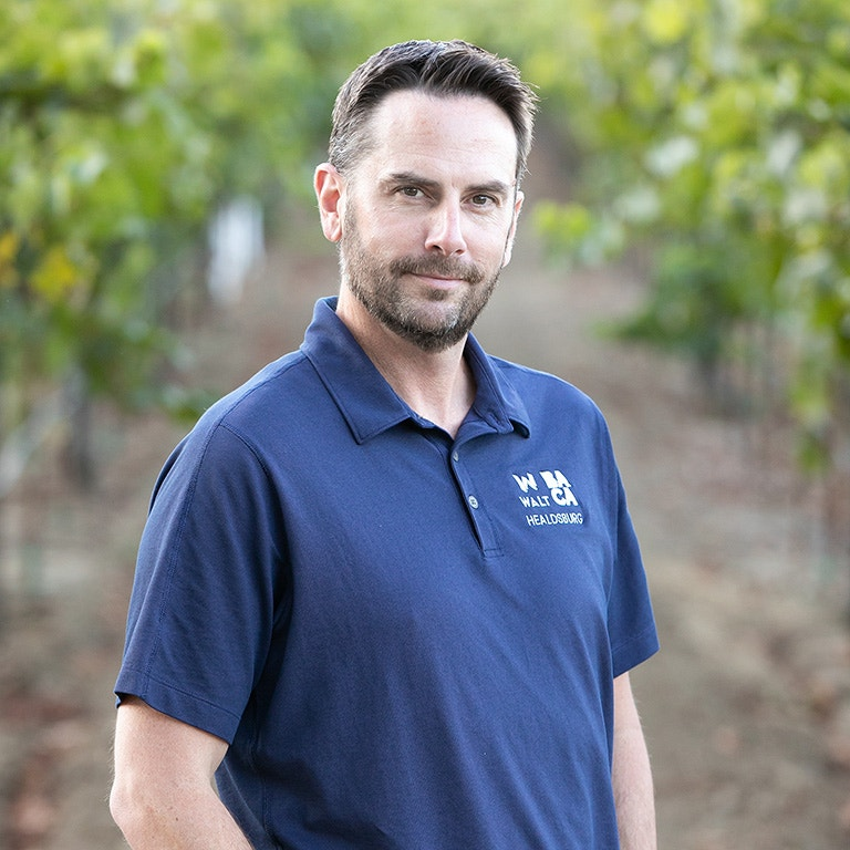 Aaron Knight, Wine Educator image portrait
