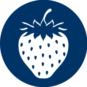 Blue Icon of a Strawberry